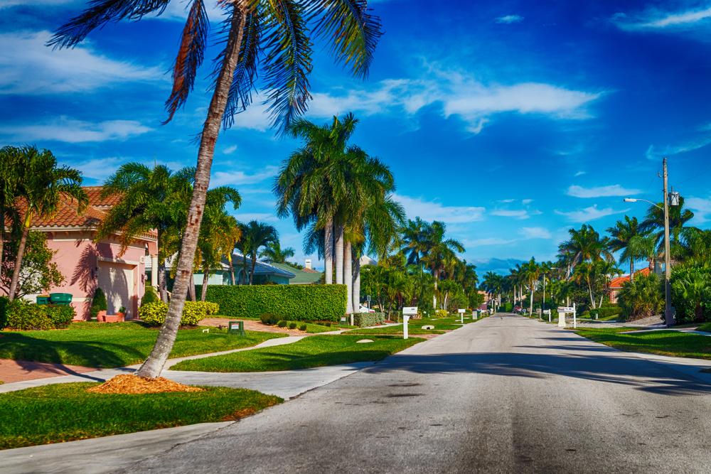 A beautiful Florida street